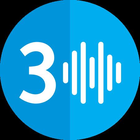 3 Voice Lines